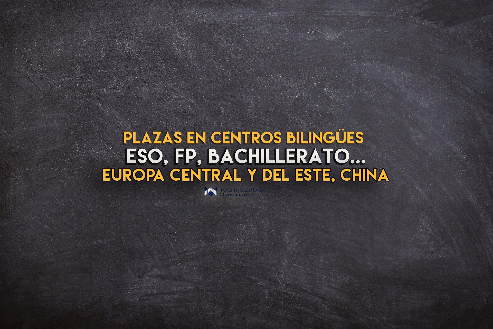 Plazas docentes en centros bilingües